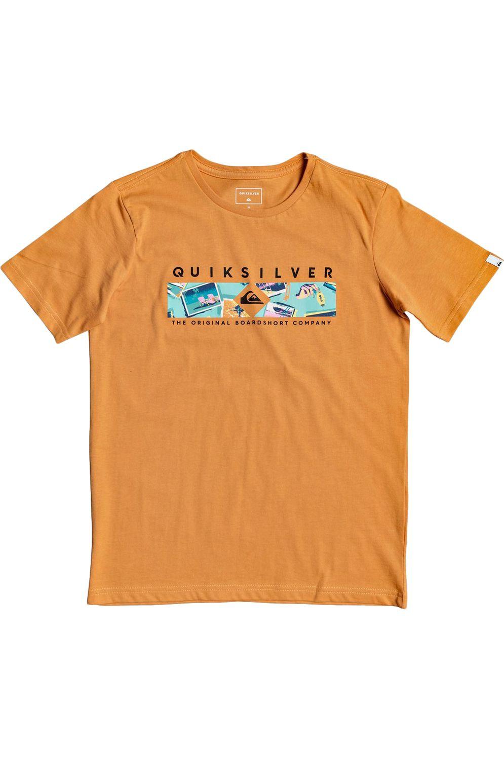 T-Shirt Quiksilver DISTANTFORTUNEY B Apricot Buff