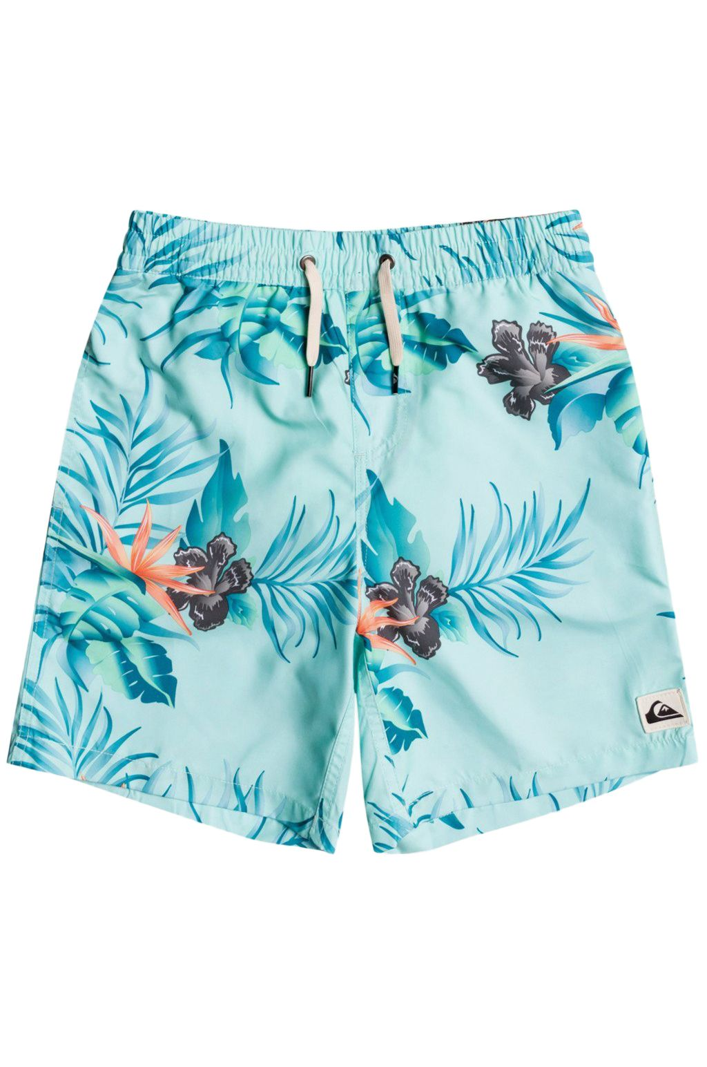 Quiksilver Boardshort Volleys PARADISE EXPRESS 15 Cabbage